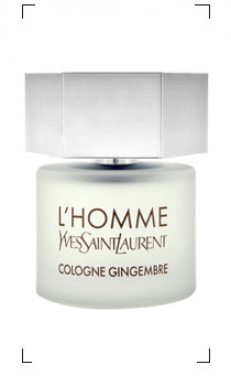 Yves Saint Laurent / L'HOMME COLOGNE GINGEMBRE EDT