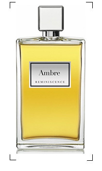 Reminiscence / AMBRE / EDT SPRAY
